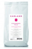 STRAWBERRY FIELD 250g